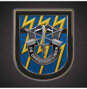 sog798-12th-sfg_beret_blue_lightning_flash_led_license_plate-12x6