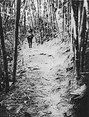 MACV-SOG NVA on Trail