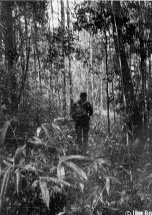 Jim Bolen moves through the jungle on a SOG mission inside Cambodia. The picture was taken by an American team member to give idea of terrain and vegetation.