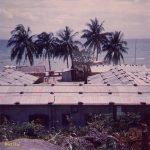 Paradise island Do Do Camp Do Do Camp