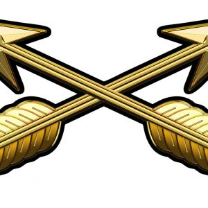 Special Forces Branch Insignia Metal Sign  17 x 9""