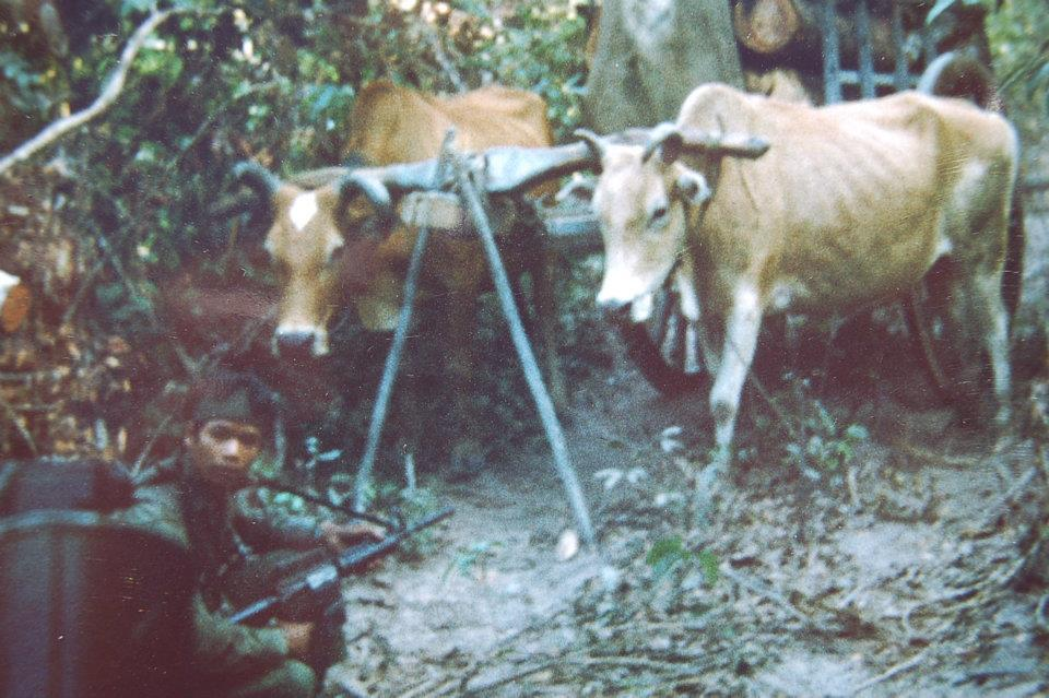 The ox cart has mine making implements, We captured two NVA and three VC.